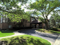 Photo of 7737 W Golf Drive, Unit Number 103, PALOS HEIGHTS, IL 60463 (MLS # 10262770)