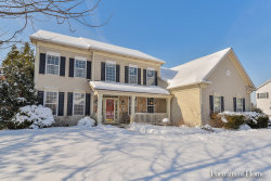 Photo of 1584 Hunting Hound Lane, BARTLETT, IL 60103 (MLS # 10263531)