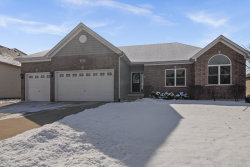 Photo of 352 Andover Drive, OSWEGO, IL 60543 (MLS # 10265595)