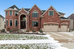 Photo of 1976 Saddle Farm Lane, NAPERVILLE, IL 60564 (MLS # 10272966)