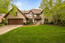 Photo of 1712 Lakeview Drive, DARIEN, IL 60561 (MLS # 10273439)