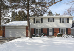 Photo of 128 Columbia Avenue, HINSDALE, IL 60521 (MLS # 10273613)