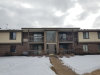 Photo of 590 Somerset Lane, Unit Number 5, CRYSTAL LAKE, IL 60014 (MLS # 10274672)