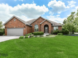 Photo of 746 Stacey Drive, NEW LENOX, IL 60451 (MLS # 10275611)