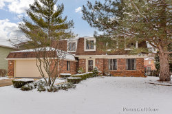 Photo of 515 E Bauer Road, NAPERVILLE, IL 60563 (MLS # 10276047)