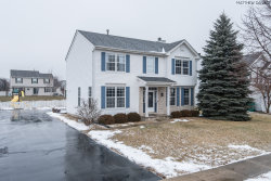 Photo of 3009 Carlyle Court, NEW LENOX, IL 60451 (MLS # 10279448)