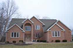 Photo of 1011 Forest View Drive, MORRIS, IL 60450 (MLS # 10279525)
