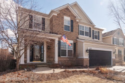 Photo of 2436 Prairie Crossing Drive, MONTGOMERY, IL 60538 (MLS # 10295554)