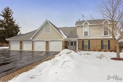 Photo of 301 N Creekside Trail, Unit Number D, MCHENRY, IL 60050 (MLS # 10298427)