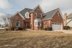 Photo of 13248 Lakepoint Drive, PLAINFIELD, IL 60585 (MLS # 10298531)