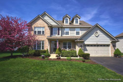 Photo of 26222 Mapleview Drive, PLAINFIELD, IL 60585 (MLS # 10299381)