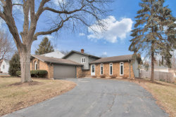 Photo of 49 Redstart Road, NAPERVILLE, IL 60565 (MLS # 10299671)