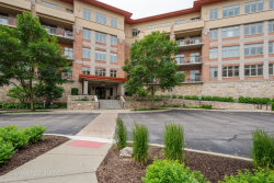 Photo of 115 Prairie Park Drive, Unit Number 205, WHEELING, IL 60090 (MLS # 10308832)