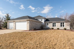 Photo of 9440 Peacock Lane, TINLEY PARK, IL 60487 (MLS # 10309053)