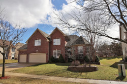 Photo of 1 Cranberry Court, STREAMWOOD, IL 60107 (MLS # 10309103)
