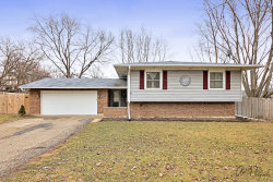 Photo of 206 N Green Street, MCHENRY, IL 60050 (MLS # 10310734)