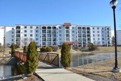 Photo of 375 Plum Creek Drive, Unit Number 301, WHEELING, IL 60090 (MLS # 10311555)