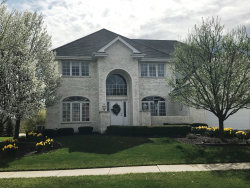 Photo of 22973 Lakeview Estates Boulevard, FRANKFORT, IL 60423 (MLS # 10316497)
