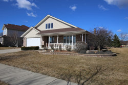 Photo of 9002 Redcastle Drive, TINLEY PARK, IL 60487 (MLS # 10317038)