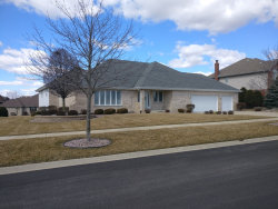 Photo of 22532 Autumn Drive, FRANKFORT, IL 60423 (MLS # 10317382)