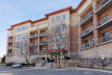 Photo of 115 Prairie Park Drive, Unit Number 503, WHEELING, IL 60090 (MLS # 10317522)