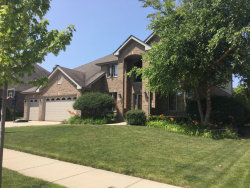 Photo of 13716 Tallgrass Trail, ORLAND PARK, IL 60462 (MLS # 10317746)