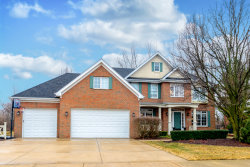 Photo of 10873 Pioneer Trail, FRANKFORT, IL 60423 (MLS # 10317960)