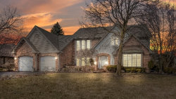 Photo of 710 Galway Drive, PROSPECT HEIGHTS, IL 60070 (MLS # 10319063)