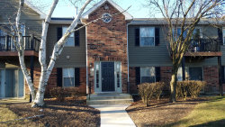 Photo of 1547 Raymond Drive, Unit Number 201, NAPERVILLE, IL 60563 (MLS # 10322704)