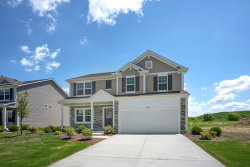 Photo of 2200 Daly Lane, PLAINFIELD, IL 60586 (MLS # 10323112)
