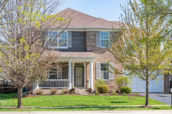 Photo of 738 Bonaventure Drive, OSWEGO, IL 60543 (MLS # 10331018)
