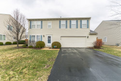 Photo of 25214 Government Lane, PLAINFIELD, IL 60544 (MLS # 10333694)