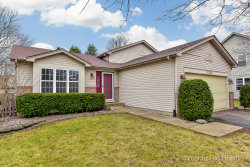 Photo of 13206 S Golden Meadow Drive, PLAINFIELD, IL 60585 (MLS # 10336468)
