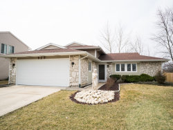 Photo of 825 Mensching Road, ROSELLE, IL 60172 (MLS # 10338154)