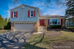 Photo of 55 W End Road, ROSELLE, IL 60172 (MLS # 10339447)