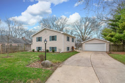 Photo of 11 Knollwood Drive, MONTGOMERY, IL 60538 (MLS # 10339746)