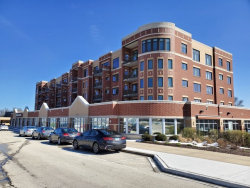 Photo of 225 Main Street, Unit Number 408, ROSELLE, IL 60172 (MLS # 10345174)