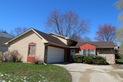 Photo of 462 N Clearwater Street, ROSELLE, IL 60172 (MLS # 10345288)