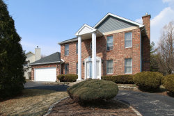 Photo of 13310 S Golden Meadow Drive, PLAINFIELD, IL 60585 (MLS # 10345415)
