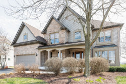 Photo of 2063 Brookwood Court, SOUTH ELGIN, IL 60177 (MLS # 10346917)