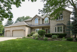 Photo of 1035 Sheringham Drive, NAPERVILLE, IL 60565 (MLS # 10348386)