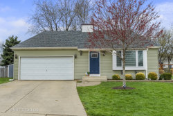 Photo of 1809 Downing Court, NAPERVILLE, IL 60563 (MLS # 10348713)