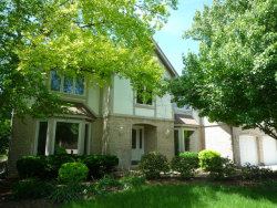 Photo of 1036 Sheringham Drive, NAPERVILLE, IL 60565 (MLS # 10349123)