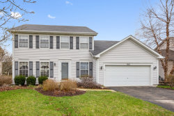 Photo of 7421 Southworth Circle, PLAINFIELD, IL 60586 (MLS # 10349550)