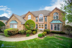 Photo of 10519 Wildflower Road, ORLAND PARK, IL 60462 (MLS # 10370042)