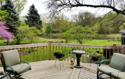 Tiny photo for 905 86th Street, DOWNERS GROVE, IL 60516 (MLS # 10377858)