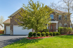 Photo of 13409 Blakely Drive, PLAINFIELD, IL 60585 (MLS # 10378596)