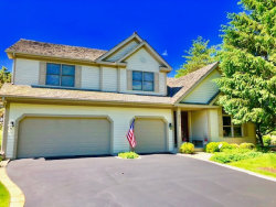 Photo of 6306 Valley View Circle, LONG GROVE, IL 60047 (MLS # 10382944)