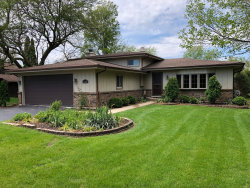 Photo of 29W280 103rd Street, NAPERVILLE, IL 60564 (MLS # 10382962)