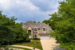 Photo of 872 Creek Bend Drive, VERNON HILLS, IL 60061 (MLS # 10386344)
